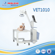 Veterinary x ray machine VET 1010